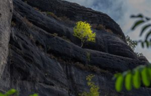 Can Rock Climbing Contribute to Ecotourism?