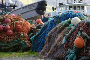 Commercial Fishing and Climate Collapse