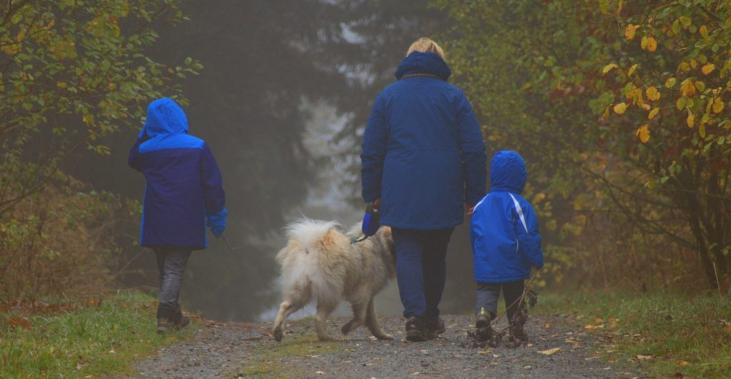 Family walk in nature
